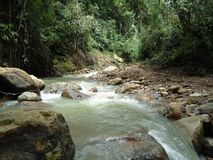 View of river current in Barinas state. In the Venezuelan plains stock photos