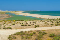 View of river delta and sea on clear day Royalty Free Stock Photo