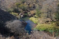 DRY BRUSH AND GREEN VEGETATION AROUND A STREAM. View of a river flanked by dry and green brush and vegetation in winter stock image