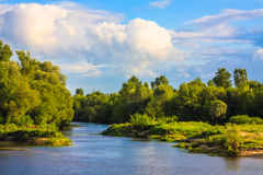 View Of A River And The Forest Royalty Free Stock Image