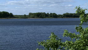 View of river and forest stock footage