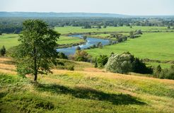 Landscape with birch. View of the river from the hill, Russian landscape with birch Stock Photos