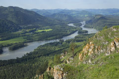 View of the river from the mountains. Katun river views from the heights of the mountains Stock Photos