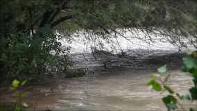 View of the river sleeve stock footage