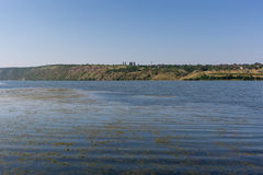 A view of river and village. In the water algae. Royalty Free Stock Image