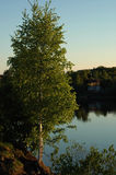View on the river Volkhov. Stock Photo