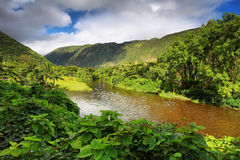 View of the river in Waipio Valley Stock Photography
