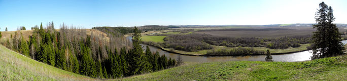View of the river and wood. Panorama, the top view on the river and the wood in the spring in a sunny day Royalty Free Stock Photos