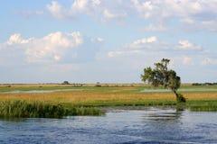 River zambesi Stock Photography