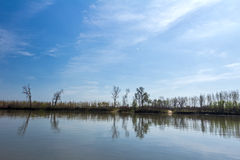 View on riverbank landscape. Royalty Free Stock Photo