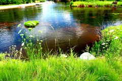 Riverbanks of Wisconsin Dells. A view of the riverbanks of the Wisconsin Dells river on a bright summer day royalty free stock images