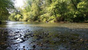 View from riverside greenway walk in Marion NC. View of shallow river with rocks bordered by green trees and bushes along greenway trail in Marion, NC Royalty Free Stock Photos