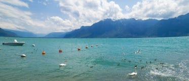View of  riviera 's Lake Geneva  at Vevey Stock Photos
