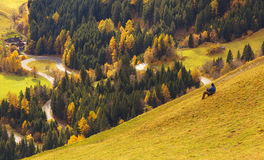 View of the road, Austria Stock Image