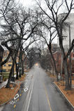 View of the road, leaving in a distance. View on the streets of Winnipeg City, Manitoba province, Canada. The photo was taken in November 2013 royalty free stock image