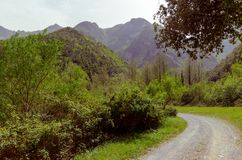 View from the road, mountains of Italy. The green mountains of the beautiful Pollino Reserve royalty free stock image