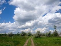 View at road in sunny day Stock Photos