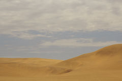 View from the road to the African dunes in the desert near the o Stock Images
