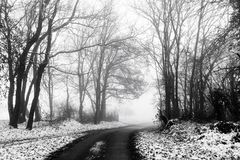 Minimalistic landscape with road through woods on snowy mist Stock Photos