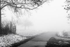 Minimalistic landscape with road through woods on snowy mist Royalty Free Stock Photography