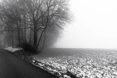 Minimalistic landscape with road through woods on snowy mist Stock Images