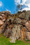 View of Cliff from Below Stock Images