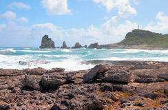 View of rocks of Pointe des Chateaux. Guadeloupe Stock Photo