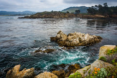 View of rocks and waves in the Pacific Ocean stock image