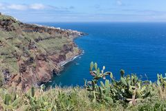 View at rocky coast of Madeira with cactuses Royalty Free Stock Photography