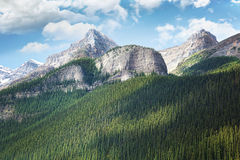 View of the Rocky Mountains in Alberta Stock Images
