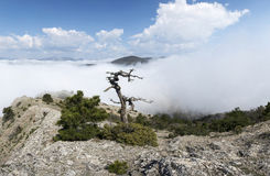 View from the rocky top of the mountain above the clouds Royalty Free Stock Photography