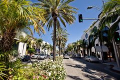 View of Rodeo Drive in Los Angeles Stock Images