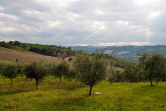 Romagna countryside Royalty Free Stock Photos