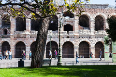 View of roman Arena from garden on Piazza Bra Stock Image