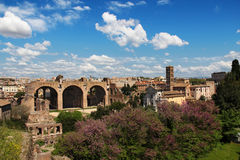 View at Roman Forum, from the Palatine Hill, Rome Royalty Free Stock Image