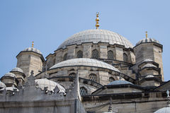 View roof the Suleymaniye Mosque in Istanbul, Turkey Stock Photography