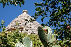 View of roof of traditional trulli house in the Aia Piccola residential area of Alberobello in the Itria Valley, Puglia Italy. Cacti in foreground stock images