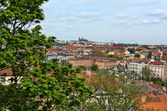 View of the roofs of Prague Royalty Free Stock Images
