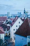 View of the roofs and spiers of old churches of Tallinn Royalty Free Stock Images