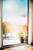 View from the room on the balcony or the terrace with roses flowers pot, drapes and Beautiful sky Royalty Free Stock Image