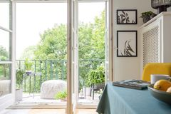 Room interior on a balcony and trees. View from a room interior on a balcony and trees stock image