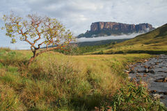 A view of the Roraima Mountain in Venezuela Stock Photo