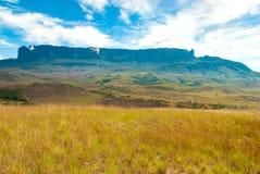 View of Roraima Tepui, Gran Sabana, Venezuela. View of Roraima Tepui from Great Savanna, Canaima National Park, Venezuela Royalty Free Stock Images