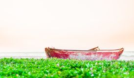 Rowing boat at the beach by Palomino in Colombia Stock Photos