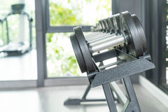 View of rows of dumbbells. On a rack in a gym Stock Photos