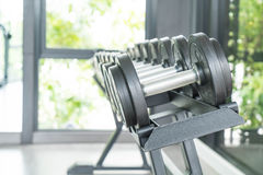 View of rows of dumbbells. On a rack in a gym Stock Photo
