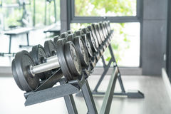 View of rows of dumbbells. On a rack in a gym Stock Images