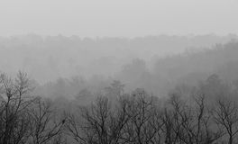View From Ruffner Mountain on a Foggy Day Stock Images