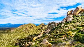 View of the rugged rocky mountains in the McDowell Mountain Range. Around Phoenix, Arizona viewed from the Tom`s Thumb Trail royalty free stock photo