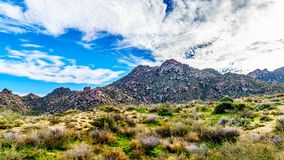 View of the rugged rocky mountains in the McDowell Mountain Range. Around Phoenix, Arizona viewed from the Tom`s Thumb Trail stock images